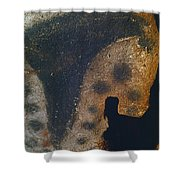 Cave Art: Horse Shower Curtain