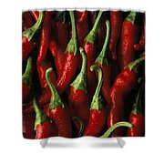 Cayenne Shower Curtain