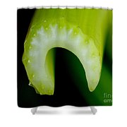 Celery Shower Curtain