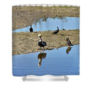 Center Of Attraction Shower Curtain