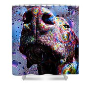 Chocolate Lab Nose Shower Curtain