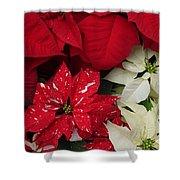 Christmas Cheer Shower Curtain