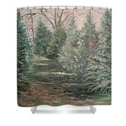 Christmas Tree Lot Shower Curtain