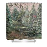 Christmas Tree Lot Shower Curtain by Rosemary Kavanagh