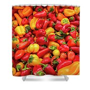 Close Up View Of Small Bell Peppers Of Various Colors Shower Curtain