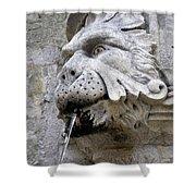Closeup Of A Public Fountain In Dubrovnik Croatia Shower Curtain