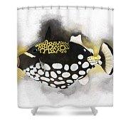Clown Triggerfish No 01 Shower Curtain