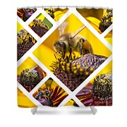 Collage Of Western Honey Bee Shower Curtain