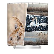 Collage Of Winter Grass Shower Curtain