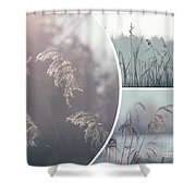 Collage Of Winter Time In Poland. Shower Curtain