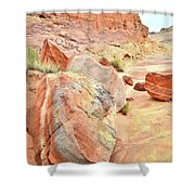Colorful Boulders In Wash 3 In Valley Of Fire Shower Curtain