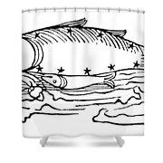 Constellation: Pisces Shower Curtain