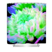 Cool Colorful Chrysanthemum Shower Curtain