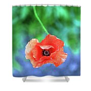Coquelicot Shower Curtain