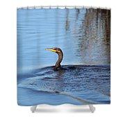 Cormorant In The Marsh Shower Curtain