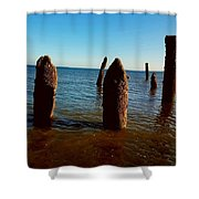 Costal Pilings  Shower Curtain