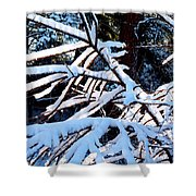 Country Solitude Shower Curtain