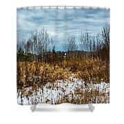 Country Winter 3 Shower Curtain