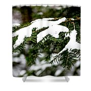 Country Winter 10 Shower Curtain
