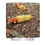 Critters Delight Shower Curtain
