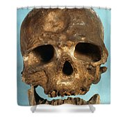 Cro-magnon Skull Shower Curtain