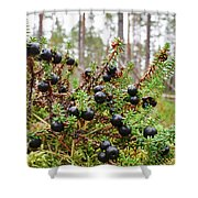 Crowberry Shower Curtain