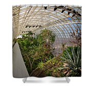 Crystal Bridge Shower Curtain