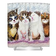 Cuddle Kitties Shower Curtain