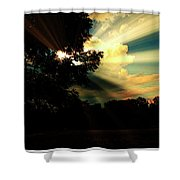 Cumulus Cloud At Dusk, Tree Silhouettes Shower Curtain