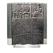Cuneiform Shower Curtain