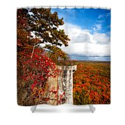Cup N Saucer-2 Shower Curtain