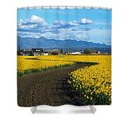 Daffodil Lane Shower Curtain