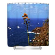 Daggers Los Antigua Shower Curtain