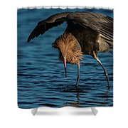 Dancing The Food Dance Shower Curtain