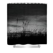 Darkening Shower Curtain