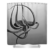 Day Octopus Shower Curtain by Dave Fleetham - Printscapes