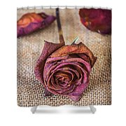 Dead Rose Shower Curtain