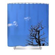 Dead Tree And Two Clouds Shower Curtain