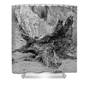Dead Wood Shower Curtain