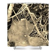 Decayed Lacing Shower Curtain