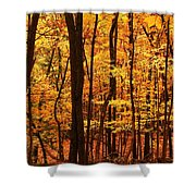 Delicious Autumn Shower Curtain