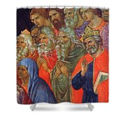 Descent Into Hell Fragment 1311  Shower Curtain