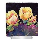 Desert Bloom 2 Shower Curtain