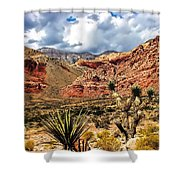 Desert Cactus Shower Curtain