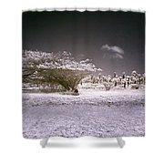 Desertic Landscape Shower Curtain