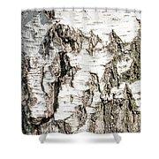 Detail Of Brich Bark Texture Shower Curtain