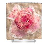 Digitally Manipulated Pink English Rose  Shower Curtain