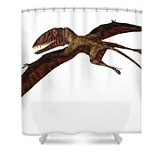 Dimorphodon On White Shower Curtain