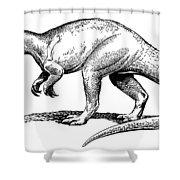Dinosaur: Allosaurus Shower Curtain