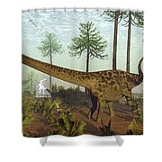 Diplodocus Dinosaurs Among Araucaria Trees - 3d Render Shower Curtain